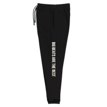 Load image into Gallery viewer, BIG BEATS Unisex Joggers