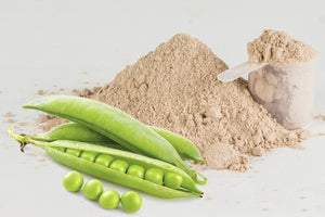 Plant-Based Protein Powders You Must NEVER Buy