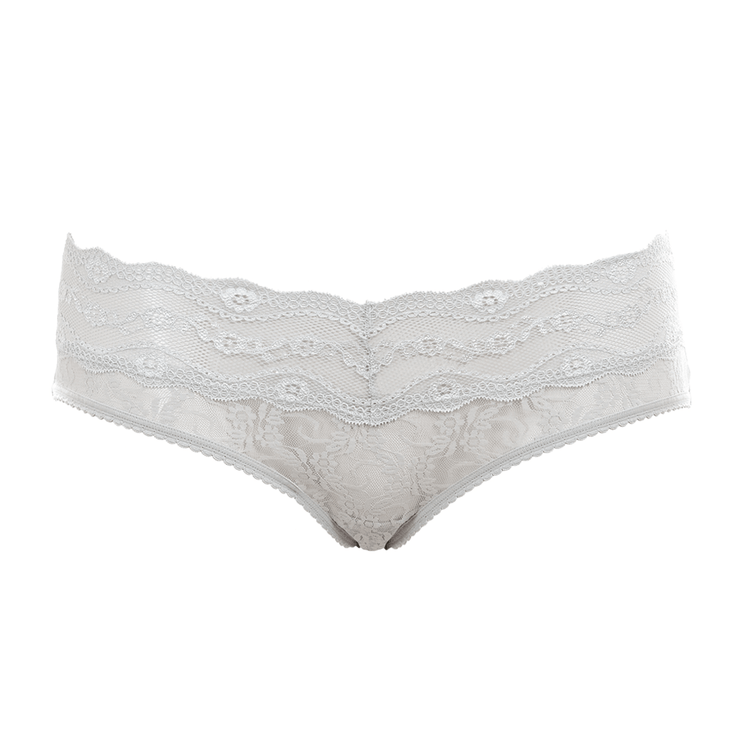 B.Tempt'd Lace Kiss Hipster Brief - Microchip Cutout