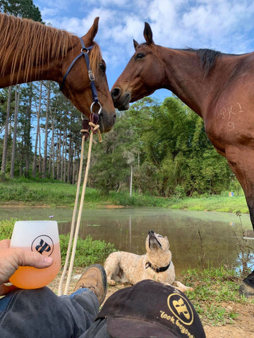 Relaxing by the damn with horses and dog