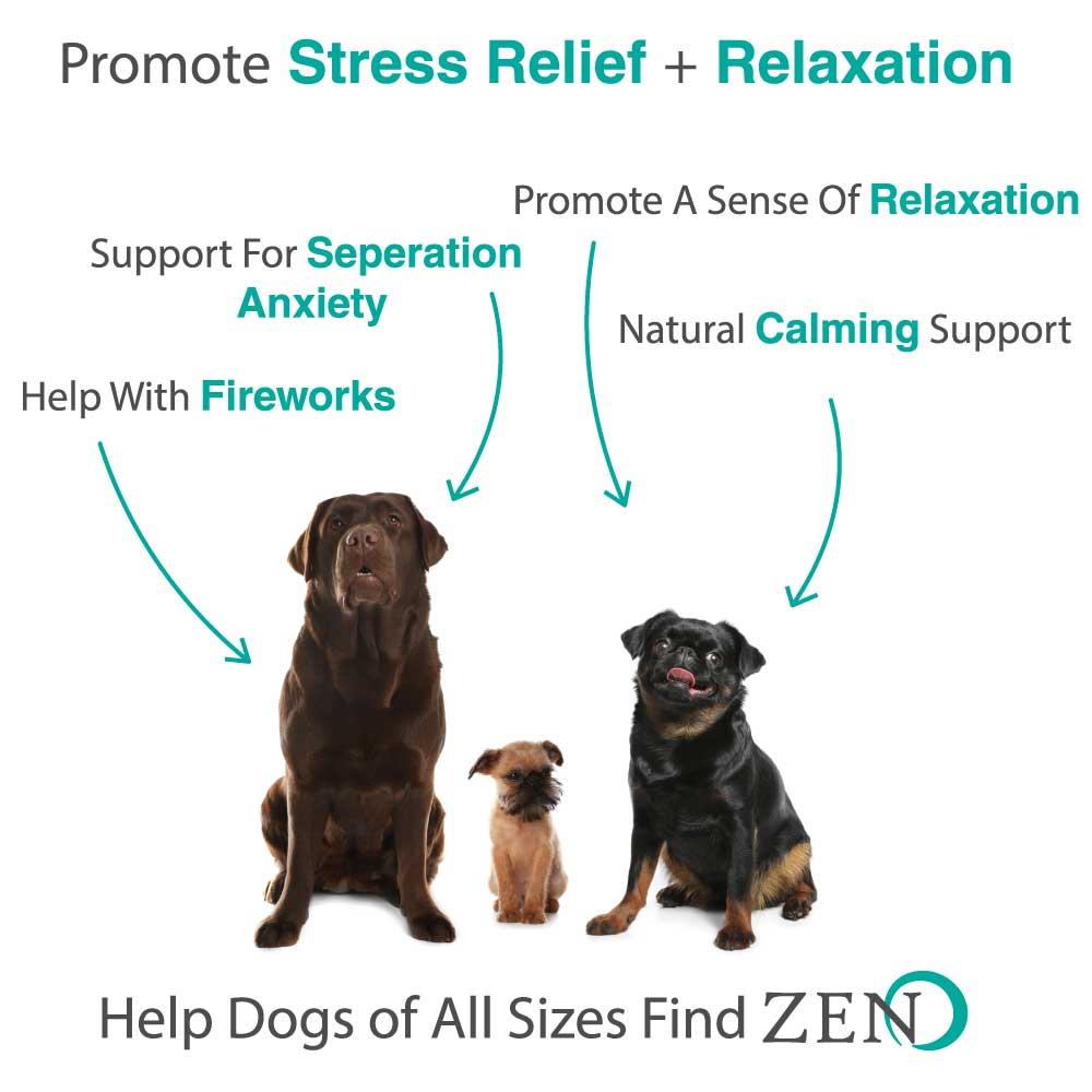 calming chews for dogs benefits