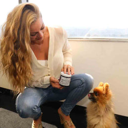 dog-affiliate-program-for-cat-products