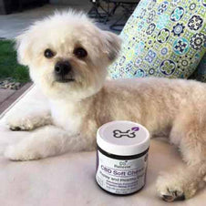 shine skin and coat Chews For Dogs customer