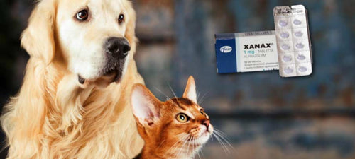 side effects of xanax for dogs and cats dosage