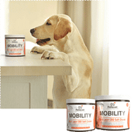 CBD for pets mobility collection