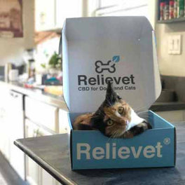 cbd for pets customer