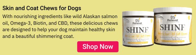 Skin and Coat Chews for Dogs