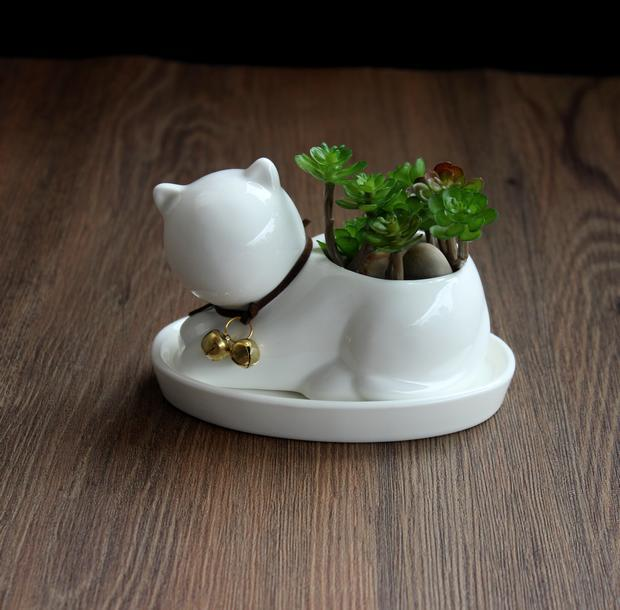 The White Cat Succulent Planter