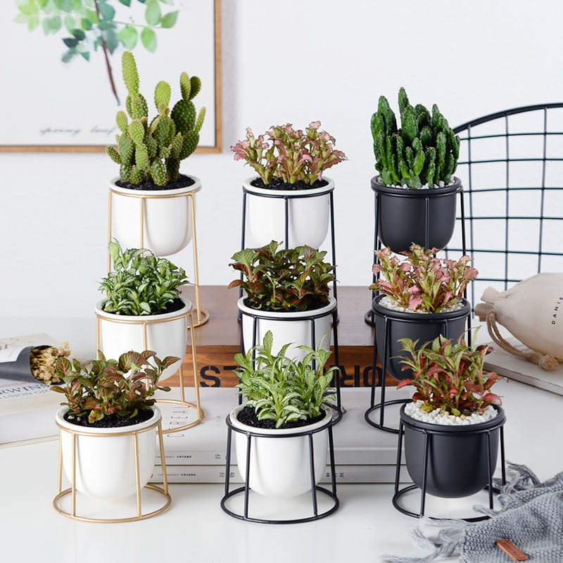 Modern Planters - Set of 3