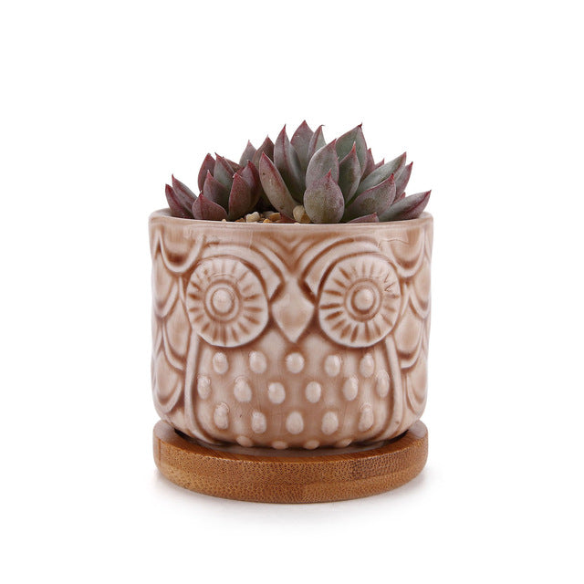The Ceramic Owl Planter