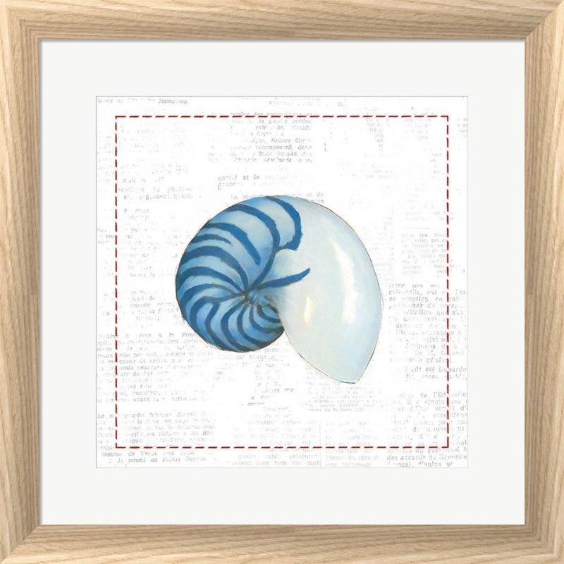Emily Adams Navy Nautilus Shell on Newsprint with Red White Washed Rounded Oatmeal Faux Wood R873806-AEAEAGJEMY