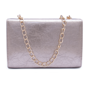 Fancy Ladies Clutch C20341