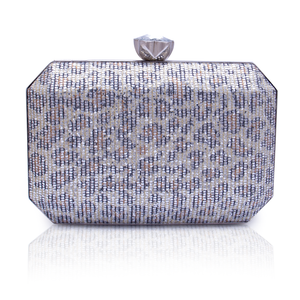 Fancy Ladies Clutch C20358