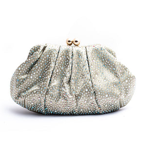Fancy Ladies Clutch C20223