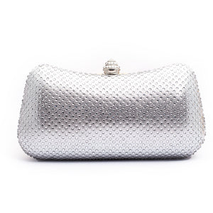 Fancy Clutch Silver Color C20199