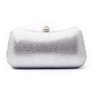Fancy Ladies Clutch C20199
