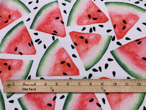 Bullet Textured Watermelon Fabric (LARGE PRINT)