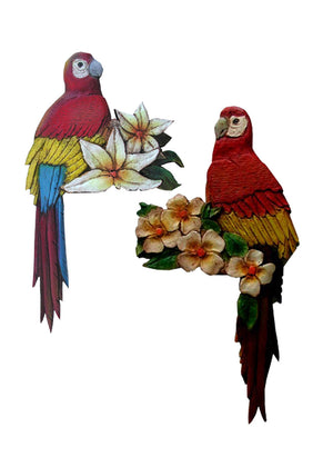 Parrot door hangers-set- of-2- #633AB