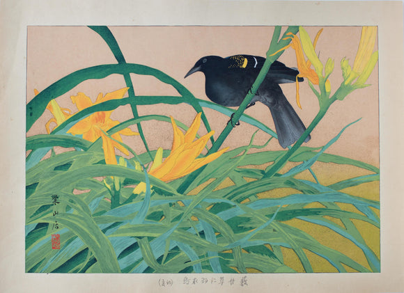 Tsuchiya Rakusan: Yellow-winged blackbird and Yellow Daylily