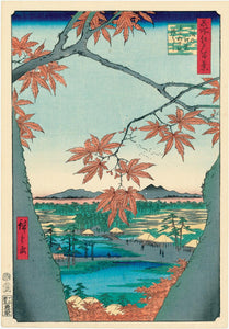 Hiroshige: Maple Trees at Mama, Tekona Shrine and Linked Bridge