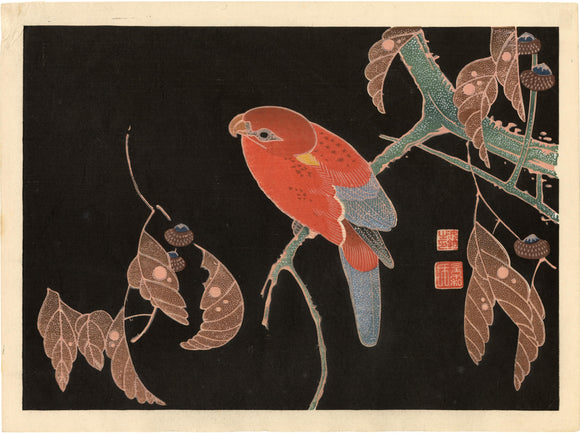 Ito Jakuchū: A brightly colored parrot on a bough against a black sky. After a painting by Ito Jakuchu.