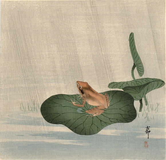 Koson 小原古邨:  蛙 Frog and Lotus Leaf