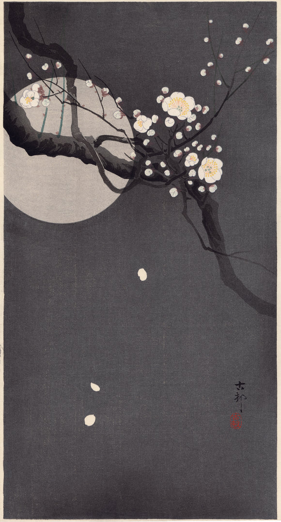 Koson 小原古邨: Flowering Plum and Moon