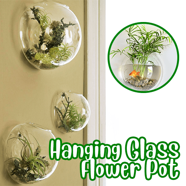 Hanging Glass Flower Pot