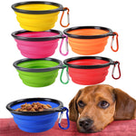 Folding Dog Food Drinking Water Bowl - 2 Dogs & A Cat