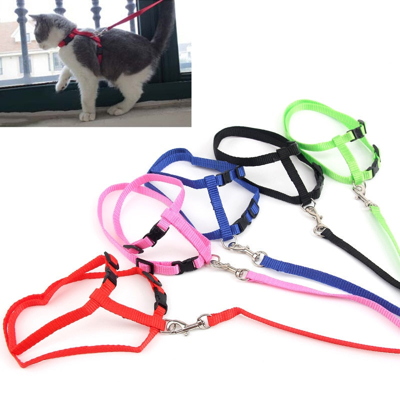 Quick Release Nylon Cat Harness Leash - 2 Dogs & A Cat