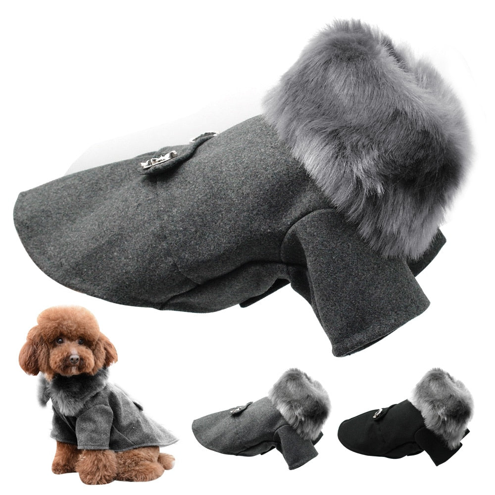 Fur Collar Woolen Dogs Jacket - 2 Dogs & A Cat