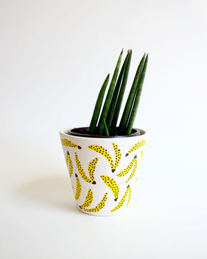 Banana pattern planter pot with a snake plant