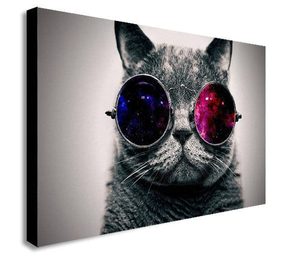 Cool Cat Canvas Wall Art Framed Print - Various Sizes