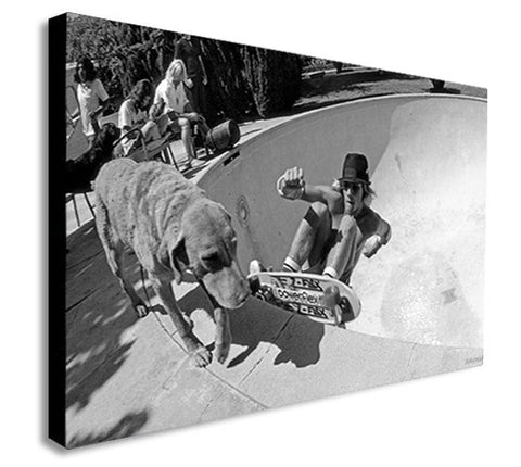 Dogtown and Z Boys Skateboarding - Canvas Wall Art Framed Print - Various Sizes
