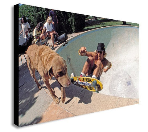 Dogtown and Z Boys Skateboarding in Colour - Canvas Wall Art Framed Print - Various Sizes