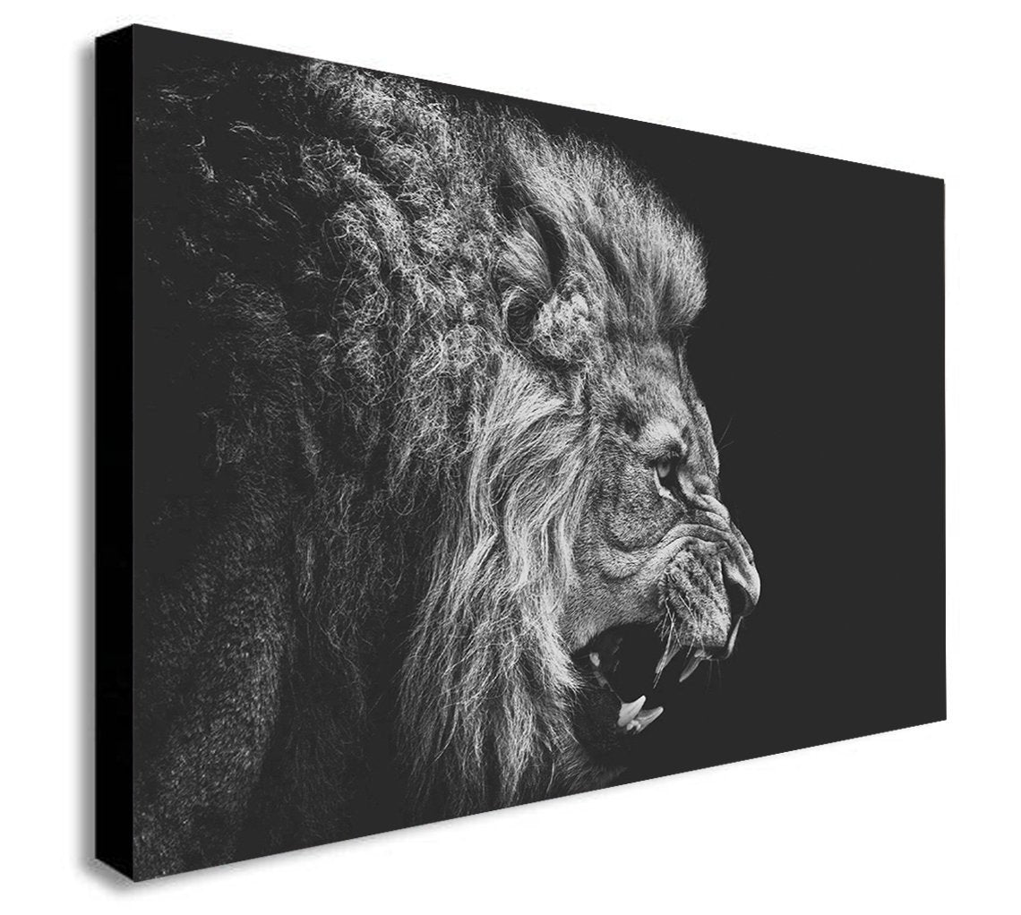 Lion Roar - Black and White - Canvas Wall Art Framed Print - Various sizes