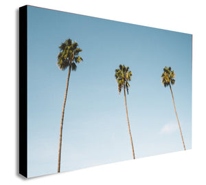 Three Palm Trees -  Canvas Wall Art Framed Print - Various Sizes