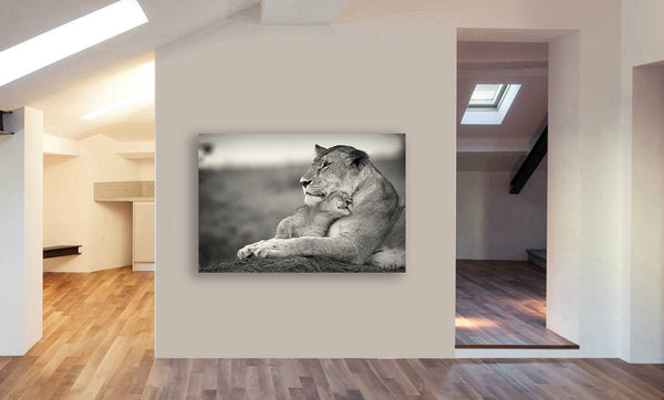 Lion And Cub Cuddling - Canvas Wall Art Framed Print - Various sizes