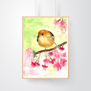 Cute Colorful Finch