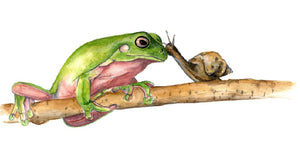 Friendship - Frog and Snail Side