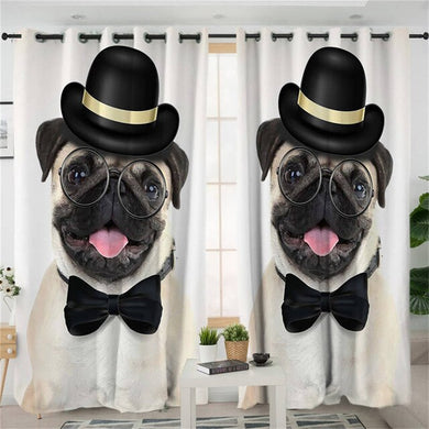 Gentleman Pug Curtains
