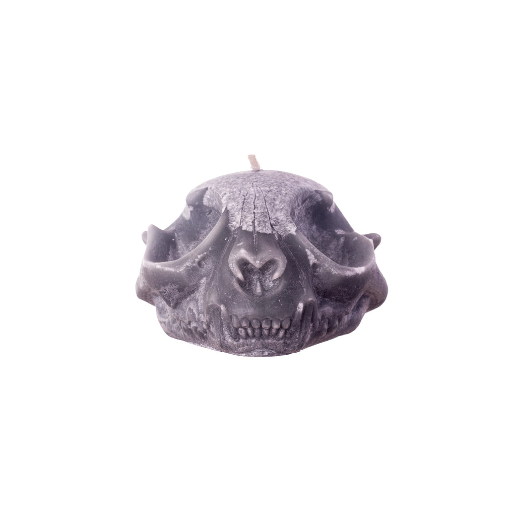 You, Me & Bones // Cat Skull Candle - Grey