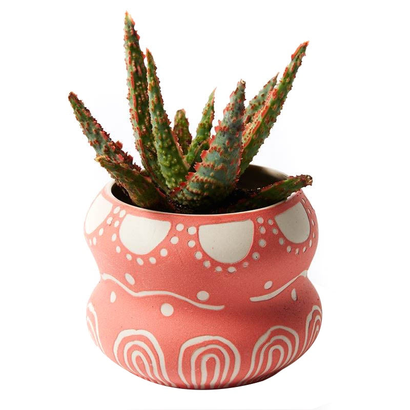 Jones & Co //  Pink Double Pocket Planter