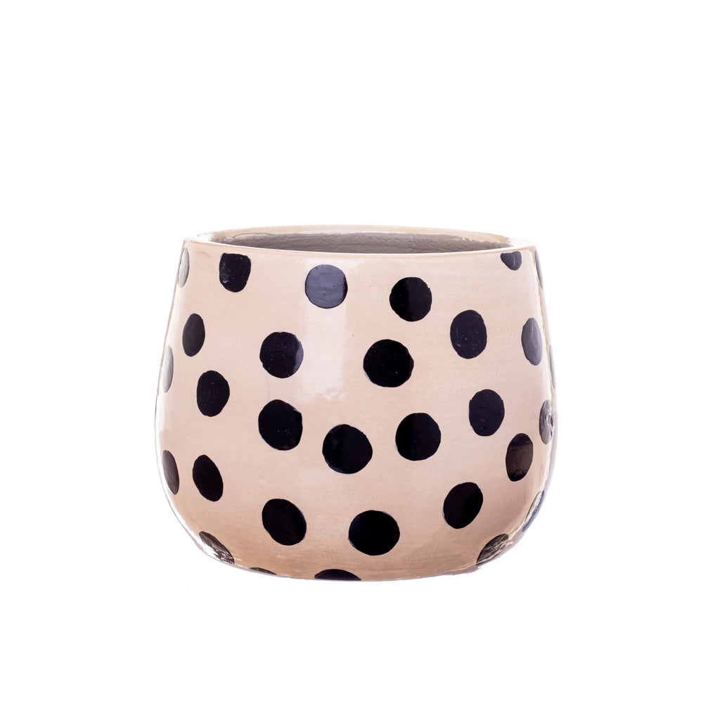 Jones & Co // Black Dot Planter