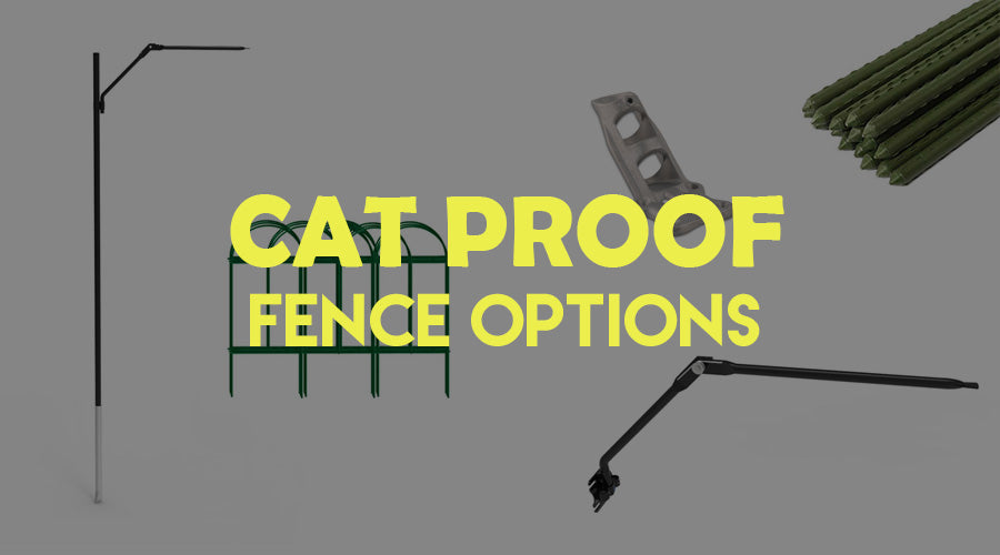 Cat-Proof Fence Guide – Different Options, Effectiveness, & Ideas