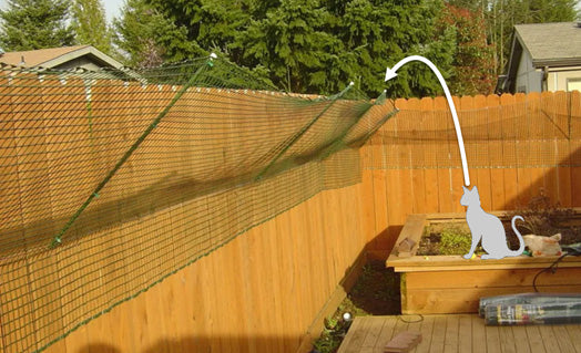 cat-proof-fence-diy-issues