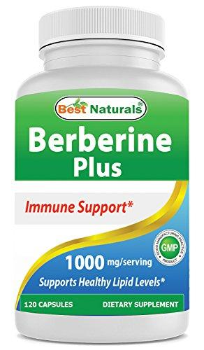Berberine plus 1000 mg 120 Capsules - Contain Vitamin C - Zinc - Supports Healthy immune System