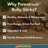 Pawstruck Mini Bully Sticks for Small Dogs & Puppies -Natural Bulk Dental Treats for Toy Breeds, Low Odor Pizzle Stix Chew in Springs, Braids, Barbells