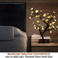 "Bright Zeal 18"" Battery Operated LED Cherry Blossom Tree Lights (6hr Timer) - Bonsai Lighted Tree - Cherry Blossom Tree Light Tabletop LED Tree Lamp"