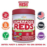 Superfood Vital Reds with Greens Juice Powder by Feel Great 365, Doctor Formulated,100% Non-GMO, Whole Food Multivitamin Powder